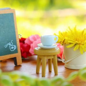 カフェをオープンしたい!必要な資格、食品衛生責任者になるには?