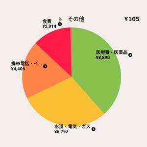 6月の生活費は余裕の3万円以下でした