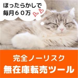 タイトル:ずっと売れ続ける『無在庫転売ツール』とは?!