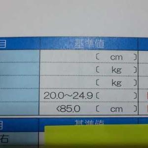 【ダイエット】結果報告。変化は嬉しいものです。