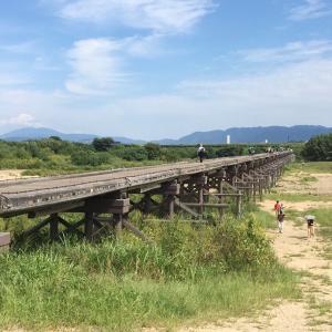 木津川プチ散策
