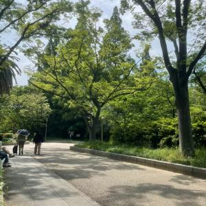大阪ウォーキング