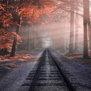 【Railsアプリケーション】任意の文字列を取得する方法