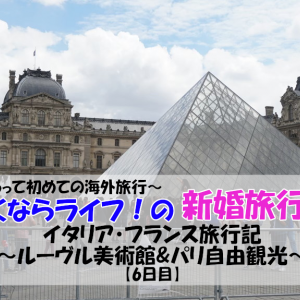 【新婚旅行】ルーヴル美術館 パリ自由観光 ~新婚旅行最終日~