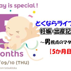 【妊娠5ヶ月】安定期に入って妻の体調良好!性別も判明!