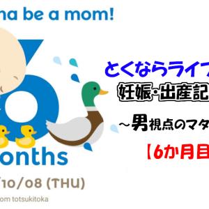 【妊娠6ヶ月】