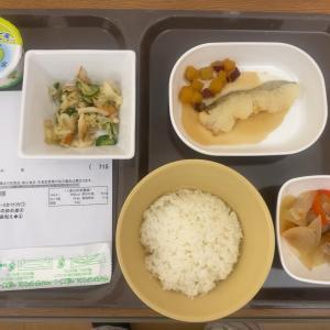 超音波検査と昼食