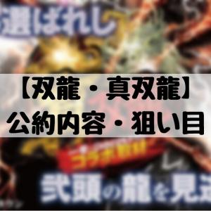 【双龍・真双龍】公約・狙い目 イベント考察