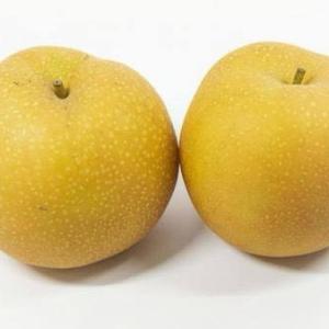 私史上一番おいしい梨