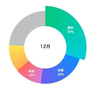 実家暮らしOLの家計簿公開【2020年12月】