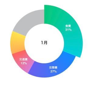 実家暮らしOLの家計簿公開【2021年1月】