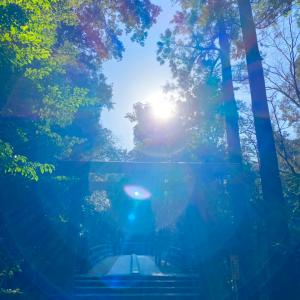 【開運パワーチャージ写真をお届け☆】伊勢神宮のパワー写真と今年こそ自分のステージを変える方法は?