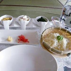 冷やし素麺と猫とタロット