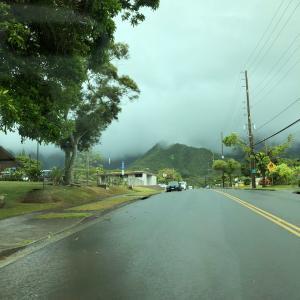 ハワイで食料配布がありました〜