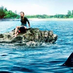 ロスト・バケーションは怖い?続編はある?サメは本物?ネタバレ評判考察