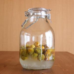 梅シロップが発酵しはじめたときの対処法