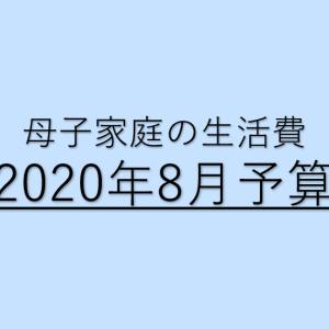 【子ひとり母子家庭】2020年8月の収入と生活費予算
