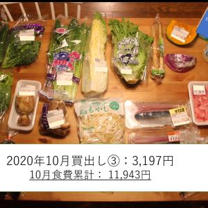【食費1.8万】子ひとり母子家庭の食材(10月19日(月)~25日(日)分)
