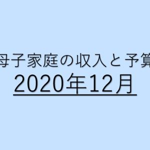 母子家庭の収入・予算(2020年12月)