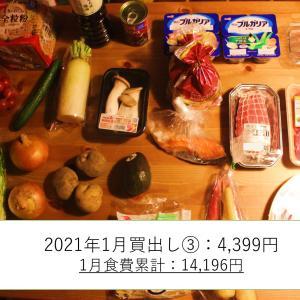 買出し報告: 2021年1月25日(月)~31日(日)分