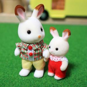 ショコラウサギのお兄さん