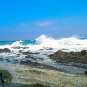 高知県室戸市の新村漁港近くでダイビングでダイバー男女4人が行方不明