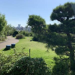 都会のど真ん中にある「目黒天空庭園・オーパス夢広場」が穴場だった!【中目黒 公園】