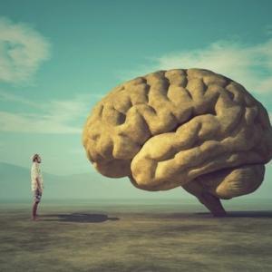 賢すぎる人あるある。知能が高すぎることで生じる6つの意外なデメリット