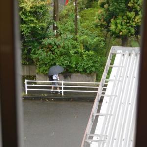 26日今日の写真 朝顔 青虫 ・東京 270人コロナ感染再拡大か