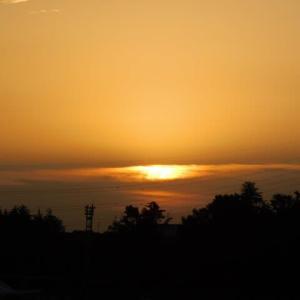 10月10日 今日の写真 朝顔と 朝
