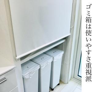【入居2年】自在棚とゴミ箱は正解だったと思う