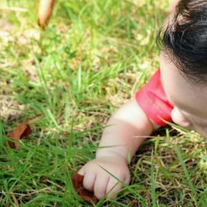 発達障害・敏感っ子のよさは自然の中で開花する~「森のようちえん」で育った私