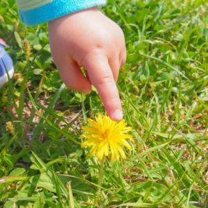 敏感っ子の育児で最も大切な2つのこと〜人一倍敏感な子(HSC)を育てています