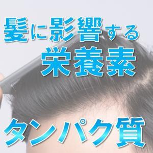 髪の原材料「タンパク質」について