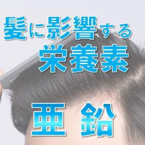髪の産生に働く「亜鉛」について