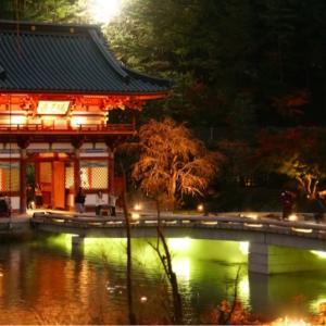 勝尾寺のライトアップ