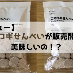 【レビュー】無印良品の「コオロギせんべい」が店舗販売開始!気になる味は?
