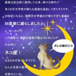 キトラ古墳の天文図は正確だった11