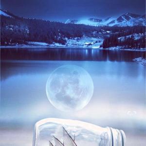 月の光が見た夢