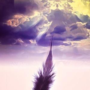 白い羽根と黒い羽根