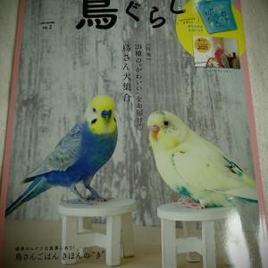 『鳥ぐらし vol.2』