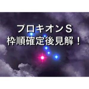 プロキオンステークス枠順確定後見解!