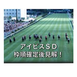 アイビスSD枠順確定後見解!