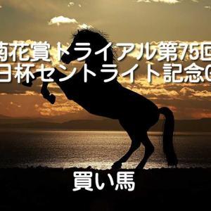 第75回朝日杯セントライト記念GⅡ 買い馬