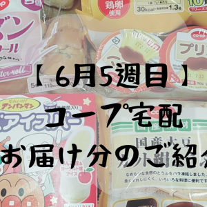【コープの配達】6月5週目お届け分 息子が喜ぶあのアイスを購入