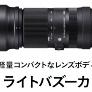 【シグマ】100-400mm F5-6.3 DG DN OS|C【レビュー】