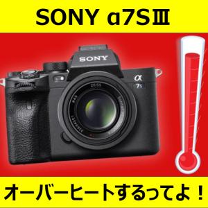 【カメラ】SONYのα7SⅢ、オーバーヒートするってよ。【残念なお知らせ】