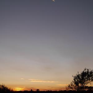 【写真】縦撮りと夕日@オーストラリア ウルル