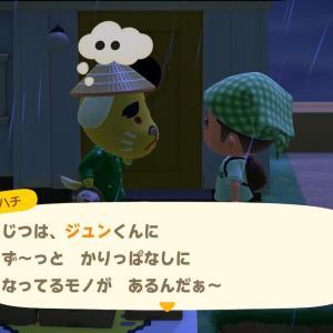 第12話 ハチのお願い