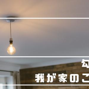 【勾配天井】見た目重視で採用したオプション